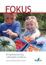 Bioforsk Fokus Vol 7 Nr.8 2012 - Agropub