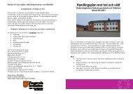 120803 Handlingsplan mot hot och våld - Tingsryds kommun