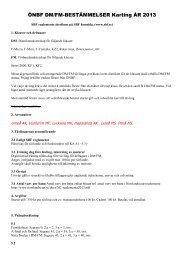 DM regler karting 2013