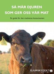 Ladda ner här - Djurskyddet Sverige
