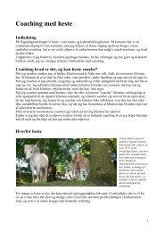 Coaching med heste - Equina