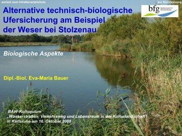 Bestand 1989 - Alternative technisch-biologische Ufersicherungen an