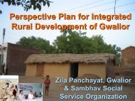 Perspective Plan for Integrated Rural Development of ... - Sambhav