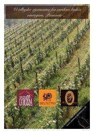 Vi tilbyder stjernevine fra verdens bedste vinregion, Piemonte ...