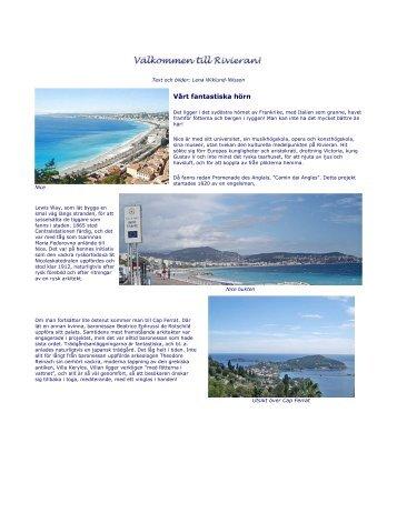 Läs mer här - SWEA International