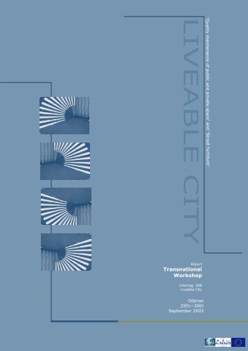Samlet rapport Odense workshop engelsk - The Liveable City