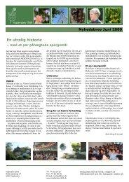 En utrolig historie Nyhedsbrev Juni 2009 - Haderslev Stift