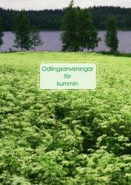 Odlingsanvisningar för kummin - Caraway Finland Oy