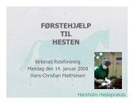 Førstehjælpskursus til hest - Birkerød Rideforening