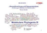 Molekulare Phylogenie III