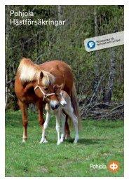 Pohjola Hästförsäkringar