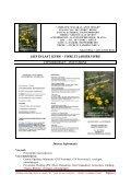 Pagina 1 - AA Vlaanderen - Page 2