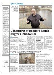 3. januar 2009 - Forlaget desAHJn