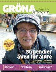 Gröna bilagan nr 1 2013 - Lärarförbundet