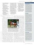 Die Hessinnen kommen! - Der Trakehner - Page 6