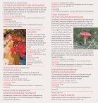 kindermaand in haarlem - Page 3