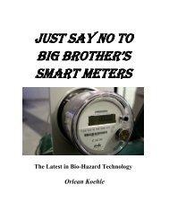 Just Say No to Big Brother's Smart Meters by Orlean Koehle