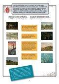 Lespakket Nederlands - Van Gogh Museum - Page 6