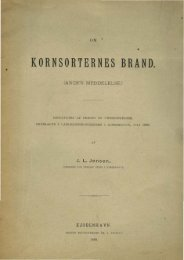 KORNSORTERNES BRAND. - Murberget CollectiveAccess System