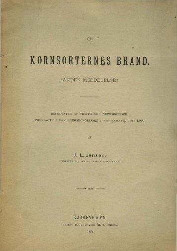 KORNSORTERNES BRAND. - Murberget CollectiveAccess System