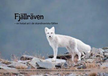 Fjällräven - Interreg Sverige Norge