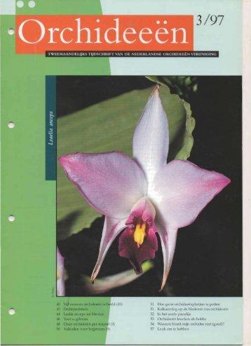 1997 - 3 - Orchideeën Vereniging Vlaanderen