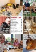 Så hjälper du de vilda djuren i vinter Vargjakten fortsätter De vill ... - Page 3