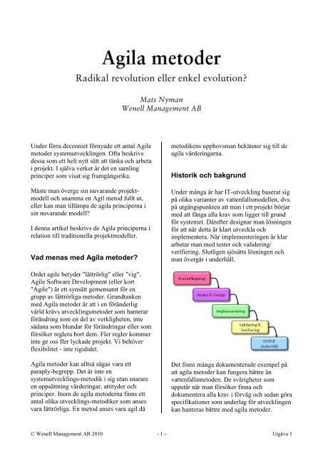 vad betyder radikal