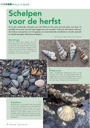 download pdf - Natuurpunt