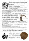 Spejdersport - De Gule Spejdere - Page 5