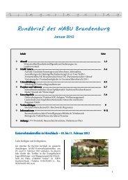 Rundbrief 1-2012 Endfassung - NABU-Netz