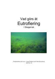 Download in Swedish (23 pages) - Projekt Skagerrak - Home