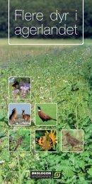 Flere dyr i agerlandet - Økologisk Landsforening