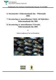 6. Stormusslor i Södermanlands län – Pilotstudie 2002 7 ...