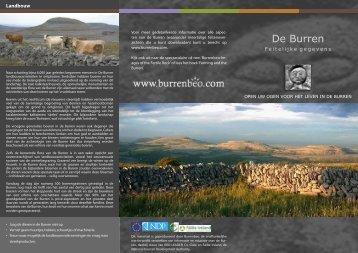 DL DUTCH 2PG - Burrenbeo