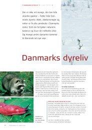 Læs side 30-33 i MiljøDanmark nr. 1, 2004