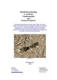 Insektsinventering Lindormsnäs - Länsstyrelsen i Stockholms län