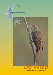 Mei 2008 - Haagse Vogelbescherming