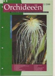2000 - 2 - Orchideeën Vereniging Vlaanderen