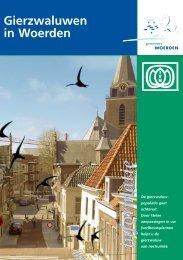Gierzwaluwen in Woerden - GierzwaluwBescherming Nederland