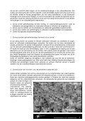 Meer over vrijhandelszones - Schone Kleren - Page 4