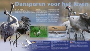 Bekijk hier de uitgebreide diereninformatie... - GaiaZOO