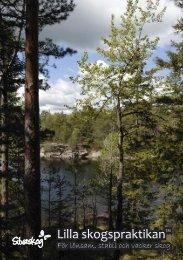 Lilla skogspraktikan™ - Silvaskog AB