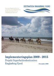 Implementeringsplan 2009-2015.pdf - Ringkøbing-Skjern Kommune