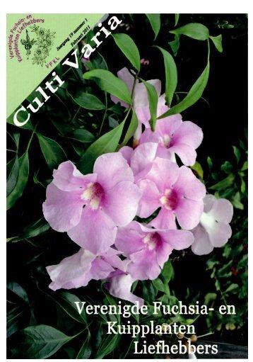 CultiVaria nummer 1 / 2011 - Verenigde Fuchsia en Kuipplanten ...