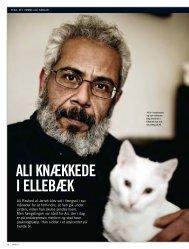 ALI KNÆKKEDE I ELLEBÆK - Amnesty International