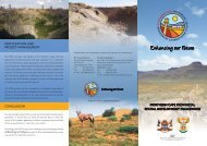 English Flyer - The Northern Cape Provincial Spatial Development ...