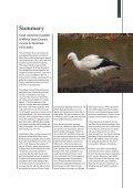 Fødeindhold i gylp fra hvid stork Ciconia ciconia i Danmark 1976-2003 - Page 5