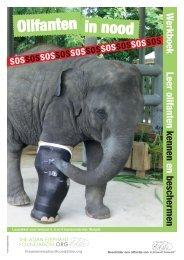 Lesmateriaal The Asian Elephant Foundation - Tekstschrijver