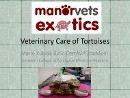 Veterinary Care of Tortoises - Manor Vets